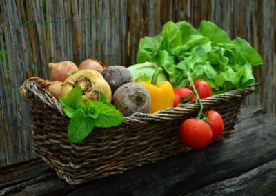 Vegetariánska